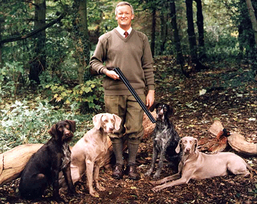 David In A Forest, Surrounded By His Gundogs